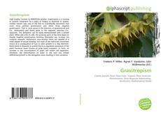 Bookcover of Gravitropism