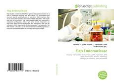 Flap Endonuclease kitap kapağı