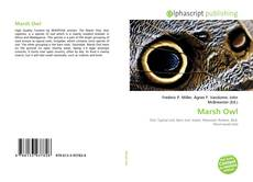 Bookcover of Marsh Owl