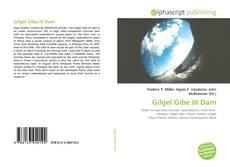 Buchcover von Gilgel Gibe III Dam