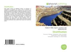 Bookcover of Stratification