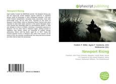 Newport Rising的封面