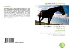 Bookcover of Camarero