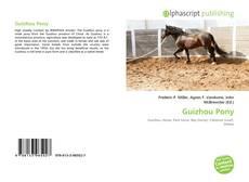 Capa do livro de Guizhou Pony