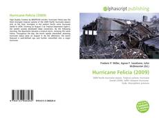 Bookcover of Hurricane Felicia (2009)