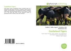 Portada del libro de Castleford Tigers