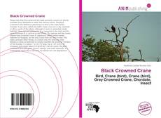 Bookcover of Black Crowned Crane