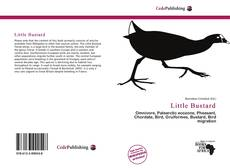 Couverture de Little Bustard