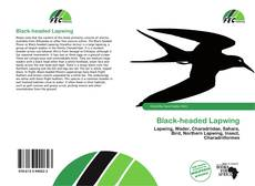 Black-headed Lapwing的封面
