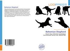Couverture de Bohemian Shepherd