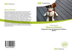 Bookcover of Bracco Italiano