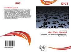 Couverture de Irish Water Spaniel