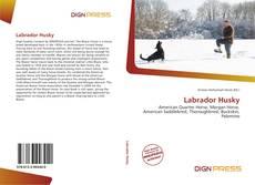Copertina di Labrador Husky