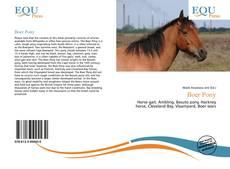 Capa do livro de Boer Pony