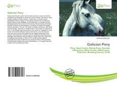 Capa do livro de Galician Pony