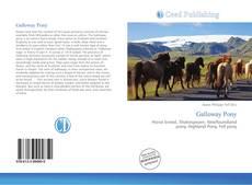 Обложка Galloway Pony
