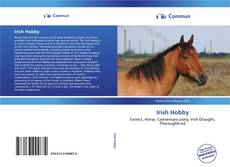 Couverture de Irish Hobby