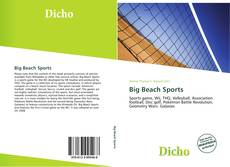 Bookcover of Big Beach Sports