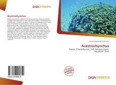 Bookcover of Acestrorhynchus