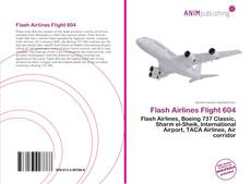 Capa do livro de Flash Airlines Flight 604