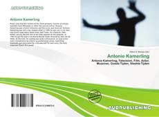 Bookcover of Antonie Kamerling