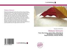 Delmore Schwartz的封面