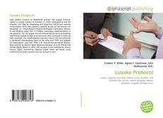 Lusaka Protocol kitap kapağı