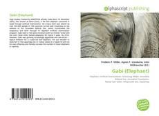 Capa do livro de Gabi (Elephant)