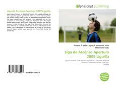 Portada del libro de Liga de Ascenso Apertura 2009 Liguilla