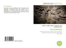 Copertina di Punarbhava
