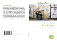 Bookcover of Steeleye Span