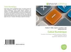 Buchcover von Calcul Numérique