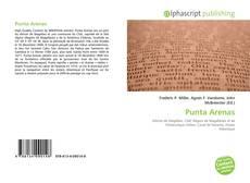 Portada del libro de Punta Arenas