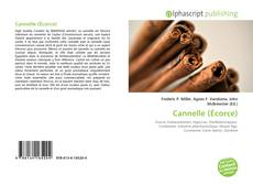 Bookcover of Cannelle (Écorce)