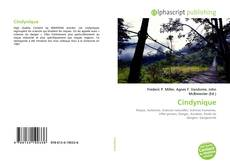 Bookcover of Cindynique