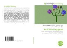 Copertina di Actinidia Polygama