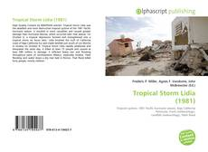 Tropical Storm Lidia (1981) kitap kapağı