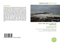 Bookcover of Gaping Gill