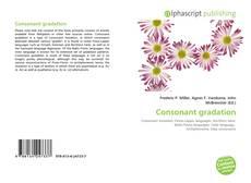 Consonant gradation的封面