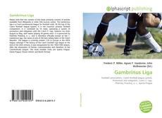 Portada del libro de Gambrinus Liga