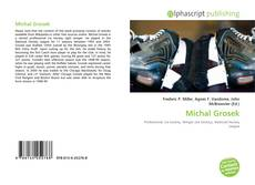 Bookcover of Michal Grosek