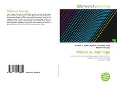 Bookcover of Misère au Borinage