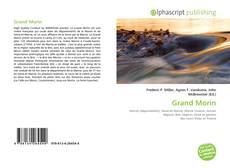 Couverture de Grand Morin