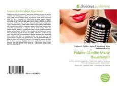 Couverture de Polaire (Émilie Marie Bouchaud)
