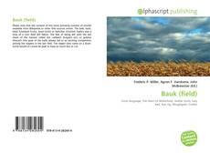 Bookcover of Bauk (field)