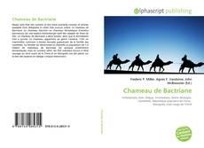 Chameau de Bactriane的封面