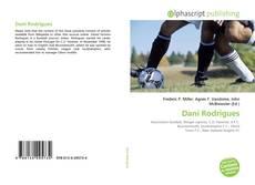 Capa do livro de Dani Rodrigues