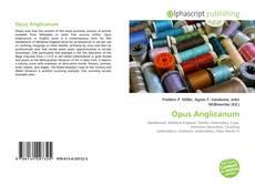 Buchcover von Opus Anglicanum
