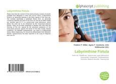 Labyrinthine Fistula kitap kapağı