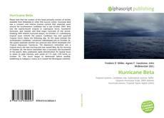 Portada del libro de Hurricane Beta